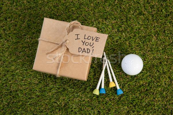 Gün hediye kutusu metin golf topu alan görmek Stok fotoğraf © wavebreak_media