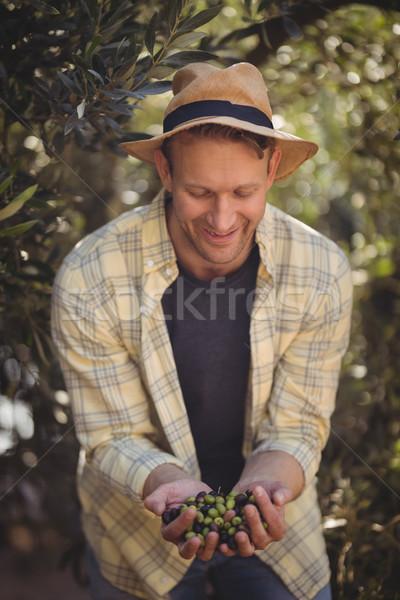 Homem azeitonas em pé árvores fazenda Foto stock © wavebreak_media