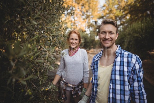 Smiling young couple standing by olive trees at farm Stock photo © wavebreak_media