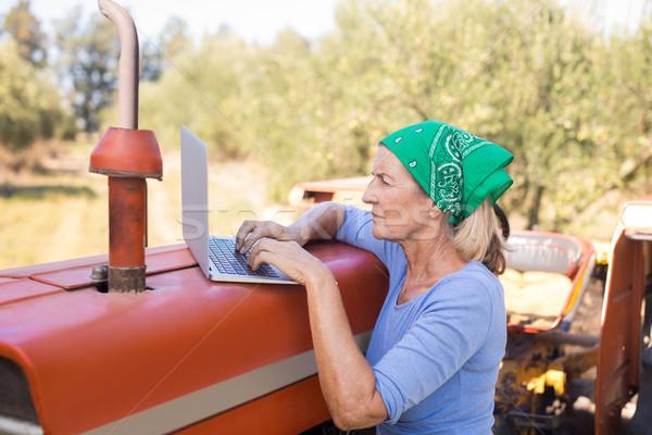Woman using laptop in olive farm Stock photo © wavebreak_media