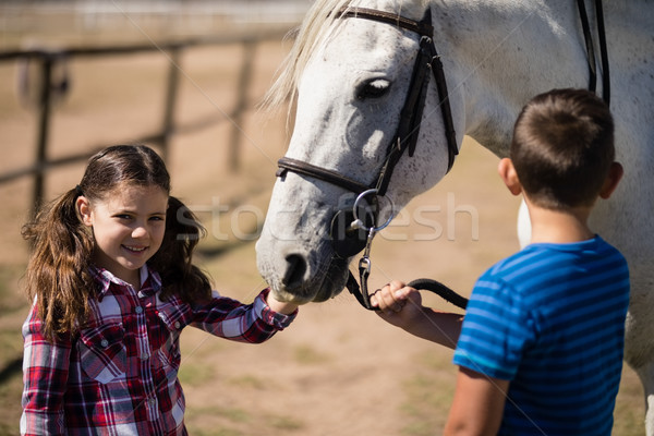 Hermanos pie caballo blanco rancho sonriendo nina Foto stock © wavebreak_media