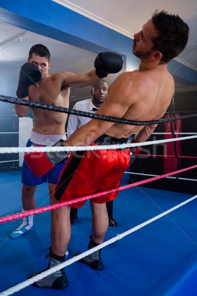 小さな ボクサー 男性 競争相手 ボクシング リング ストックフォト © wavebreak_media