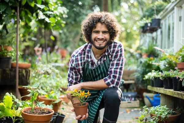 Smiling male gardener holding potted plant Stock photo © wavebreak_media