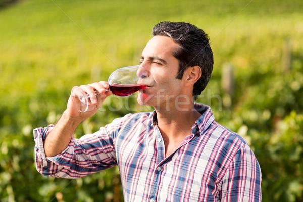 Male vintner having wine Stock photo © wavebreak_media