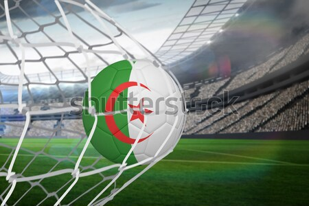 Football in algeria colours against close-up of grass mat Stock photo © wavebreak_media
