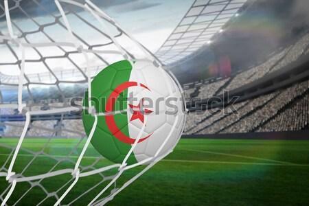 Football in algeria colours against close-up of grass mat Stock photo © wavebreak_media