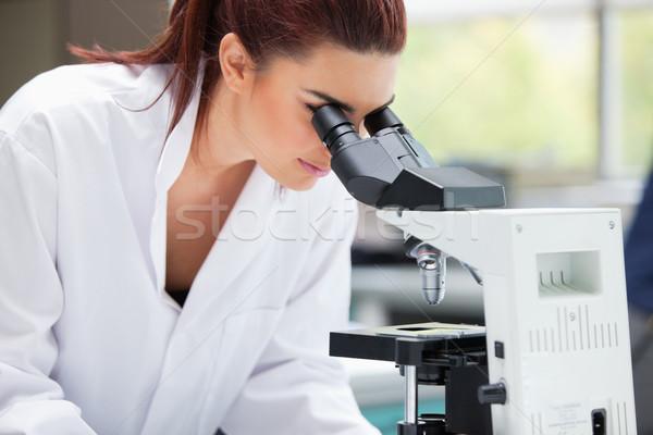 Cientista olhando microscópio laboratório mulher médico Foto stock © wavebreak_media