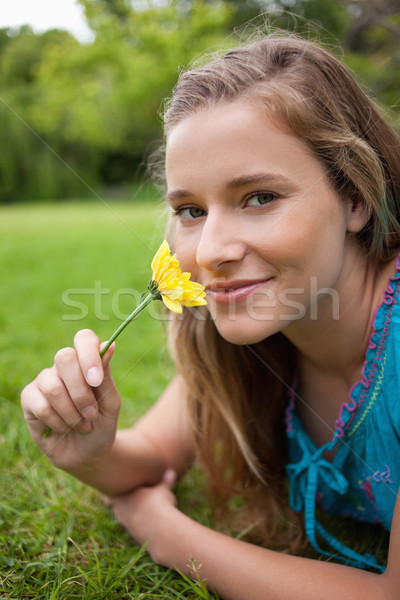 Happy student lying in a parkland while smelling a flower and looking at the camera Stock photo © wavebreak_media