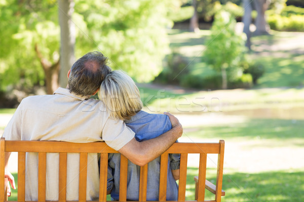 Couple détente parc banc vue arrière affectueux Photo stock © wavebreak_media