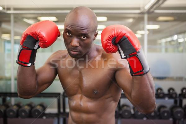 Shirtless muscular boxer in health club Stock photo © wavebreak_media