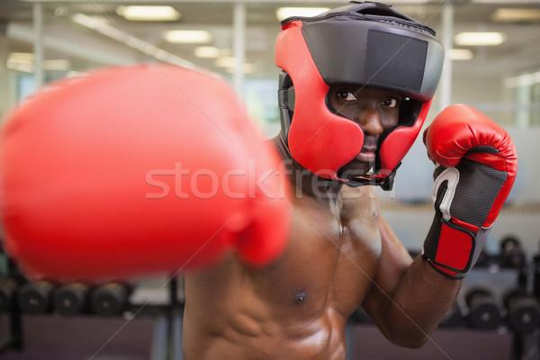 Mannelijke bokser jonge shirtless gezondheid Stockfoto © wavebreak_media