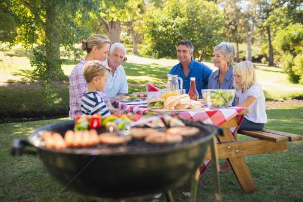 Família feliz piquenique parque primavera homem Foto stock © wavebreak_media
