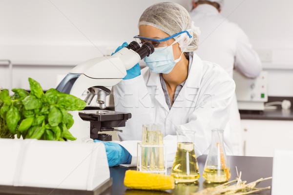 Essen Wissenschaftler Mikroskop Universität Schule Technologie Stock foto © wavebreak_media