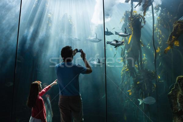 Baba kız bakıyor balık tank akvaryum Stok fotoğraf © wavebreak_media