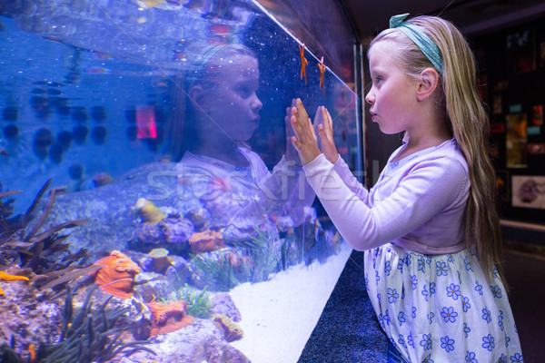 若い女性 触れる 自然 子 海 青 ストックフォト © wavebreak_media