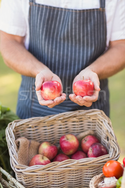 Agriculteur mains deux rouge pommes Photo stock © wavebreak_media