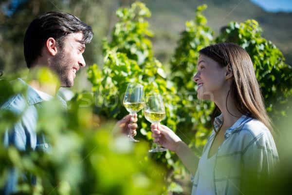 Wijnglazen wijngaard gelukkig Stockfoto © wavebreak_media