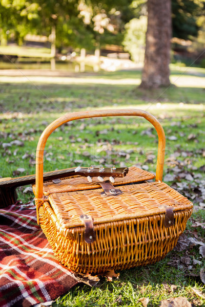 Wicker basket on field at park Stock photo © wavebreak_media