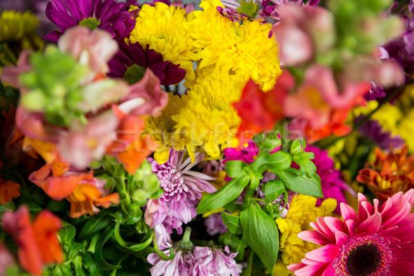 Flores florista tienda negocios flor queso Foto stock © wavebreak_media