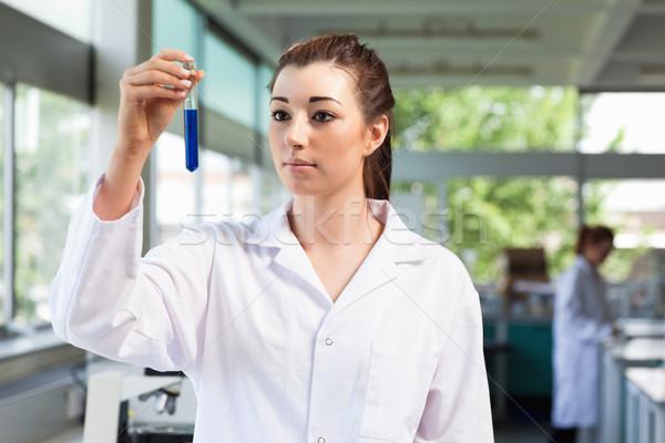 Gyönyörű tudós néz kémcső laboratórium orvos Stock fotó © wavebreak_media