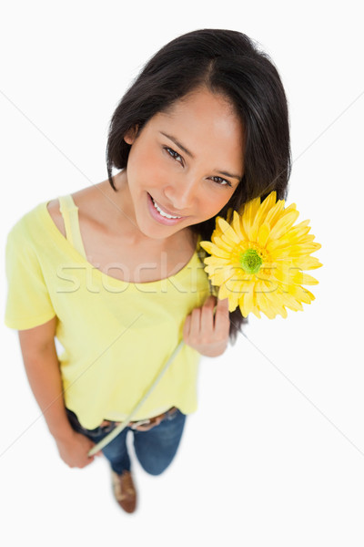 High-angle view of a Latino woman holding a flower against white background Stock photo © wavebreak_media
