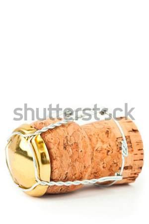 Közelkép dugó vasaló drót fehér fém Stock fotó © wavebreak_media