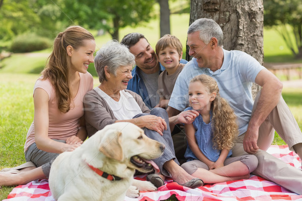 Uitgebreide familie huisdier hond vergadering park portret Stockfoto © wavebreak_media