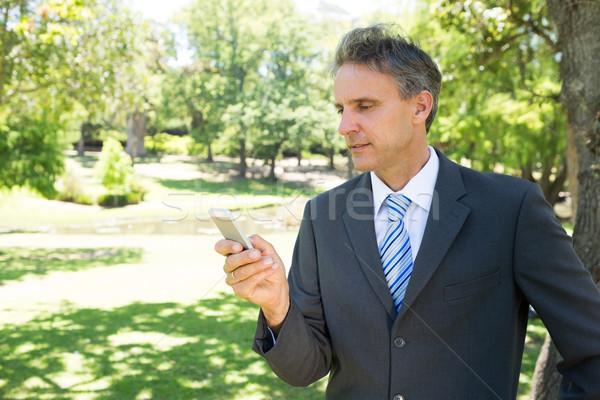 Businessman text messaging Stock photo © wavebreak_media