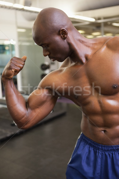Musculaire homme muscles gymnase torse nu jeunes Photo stock © wavebreak_media