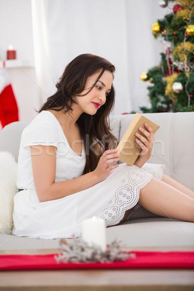 Sorridere capelli castani lettura divano Natale home Foto d'archivio © wavebreak_media