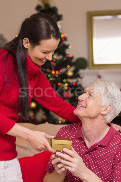 Anne teklif hediye dede ev oturma odası Stok fotoğraf © wavebreak_media