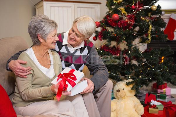 Casal de idosos sessão árvore de natal casa sala de estar Foto stock © wavebreak_media