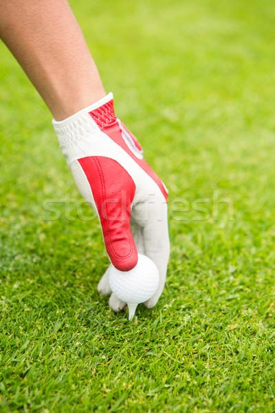 Jogador de golfe golfball campo de golfe esportes verde férias Foto stock © wavebreak_media