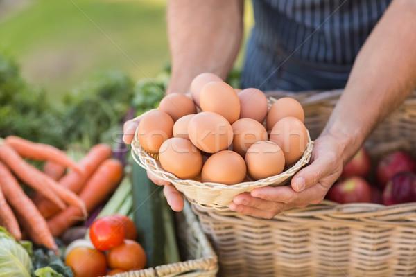 Landbouwer handen mand eieren Stockfoto © wavebreak_media