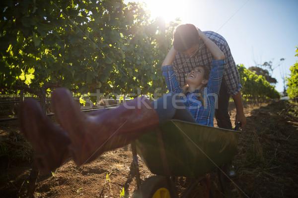 Young man pushing his happy girlfriend in wheelbarrow at vineyard Stock photo © wavebreak_media