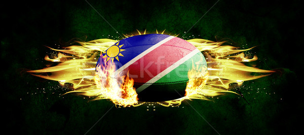 Composite image of namibia rugby ball Stock photo © wavebreak_media