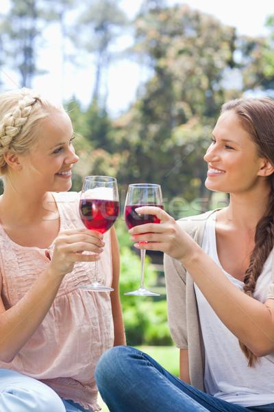 Stock fotó: Mosolyog · női · barátok · borospoharak · szépség · nyár
