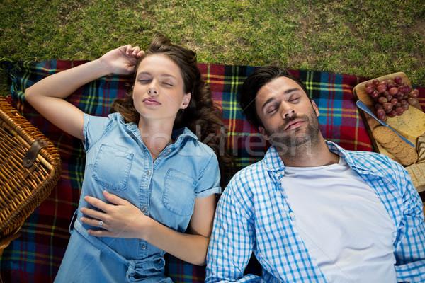 Pár alszik piknik pokróc kilátás étel mosoly Stock fotó © wavebreak_media