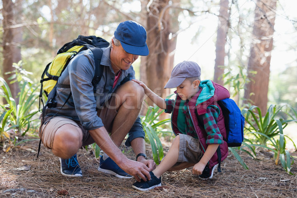 Father tying shoelace for son in forest Stock photo © wavebreak_media