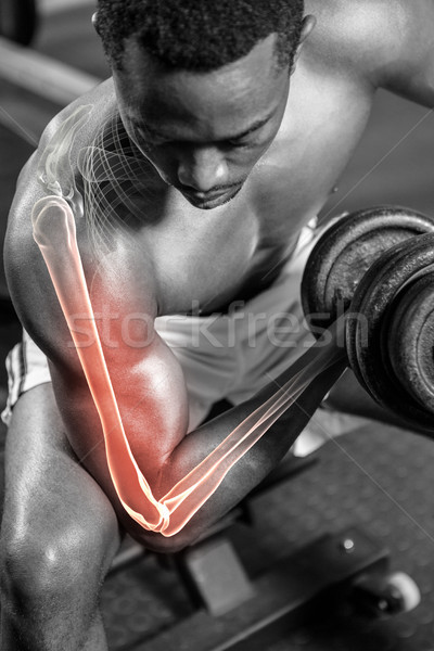 Dedicado sem camisa homem halteres ginásio fitness Foto stock © wavebreak_media