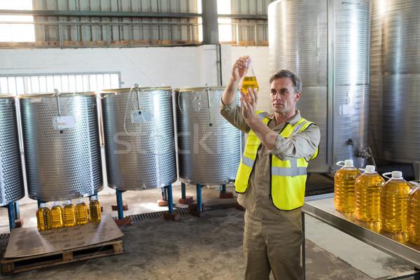 Masculina técnico examinar aceite de oliva fábrica negocios Foto stock © wavebreak_media