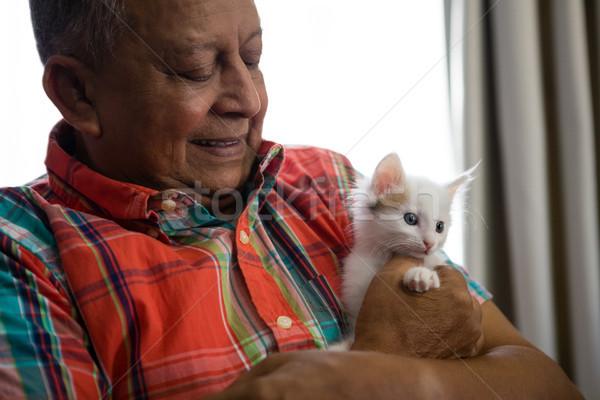 Senior man spelen kitten verpleeginrichting gelukkig Stockfoto © wavebreak_media