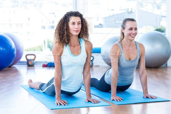 Mulheres cobra pose fitness estúdio mulher Foto stock © wavebreak_media