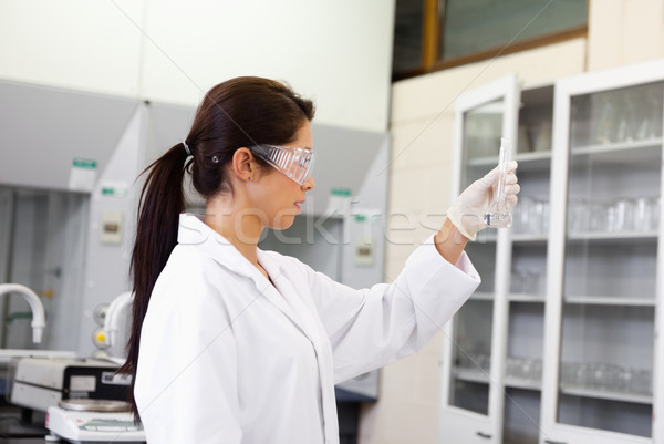 Female chemist looking at an Erlenmeyer flask in a laboratory Stock photo © wavebreak_media