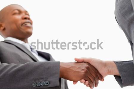бизнесмен рукопожатие бизнеса служба стороны заседание Сток-фото © wavebreak_media