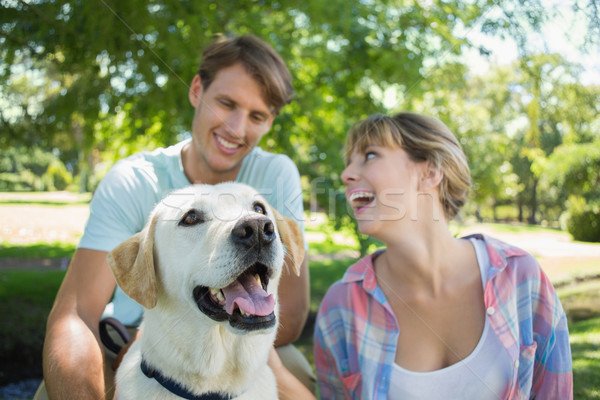 Happy couple sitting with their labrador in the park Stock photo © wavebreak_media