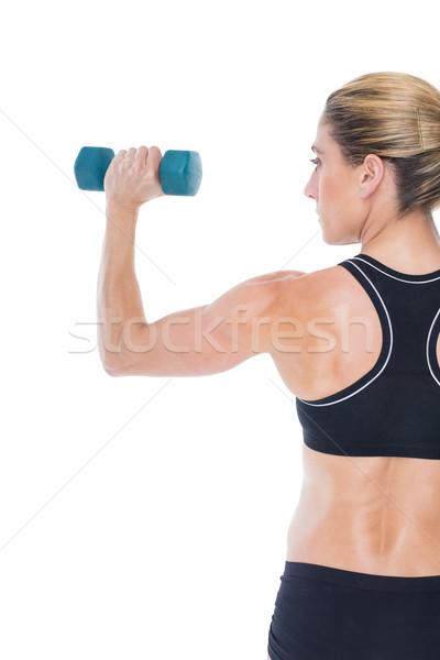 Female bodybuilder holding a blue dumbbell Stock photo © wavebreak_media