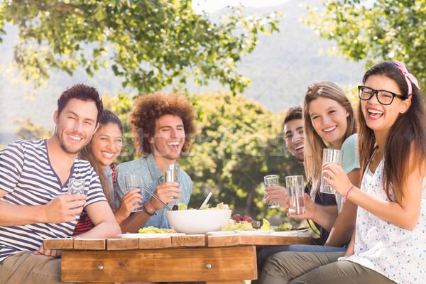 счастливым друзей парка обед природы Сток-фото © wavebreak_media