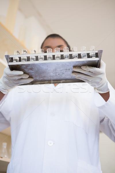 Wissenschaftler halten Fach Test Rohre Labor Stock foto © wavebreak_media