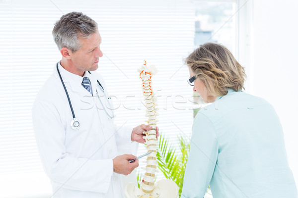 Doctor pointing anatomical spine Stock photo © wavebreak_media